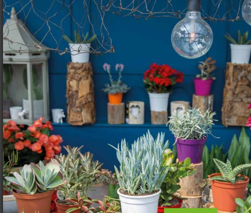 Groothandel in verpakkingsmateriaal en bloemisterijproducten for Verpakkingsmateriaal groothandel